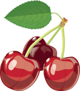 Colour image of cherries and stalk